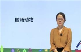 初二生物上学期同步课(人教版)(m)