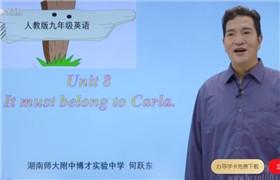 【初中英语】九下英语同步课(人教版)8讲 湖南师大附中网课