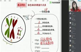 【2020寒】高一生物尖端班(段瑞莹)作业帮