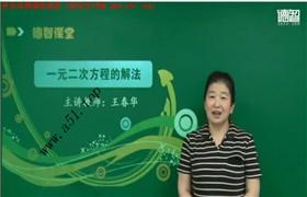 【德智教育】初三数学上学期同步课(人教版)王春华53个视频