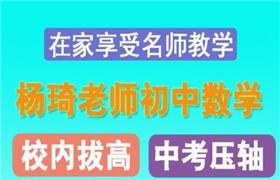杨琦 初一数学校内拔高班(春季)