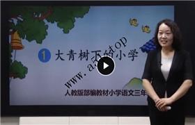 (部编版)小学三年级语文上册视频课程(同桌100)