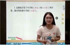 【直播课】三年级阅读专项突破栗子老师(刘丽)